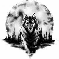 Kay Wolf Stray