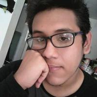 Jostin Flores Diaz
